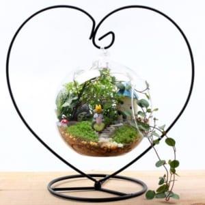 móc treo terrarium