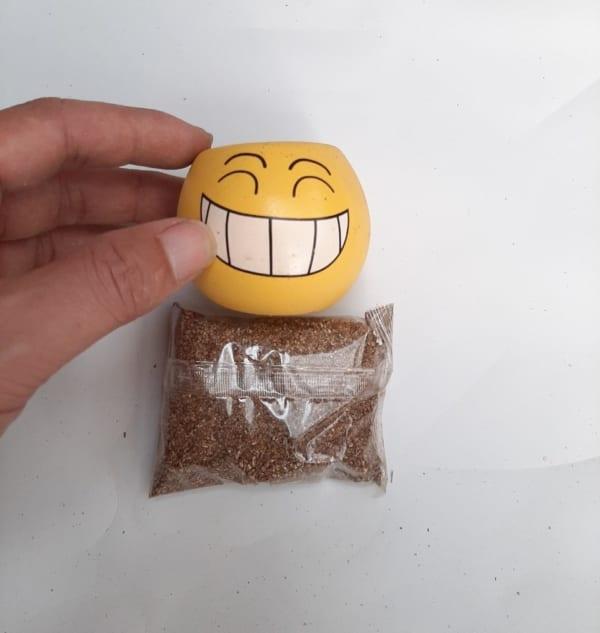 Chậu cây mặt cười