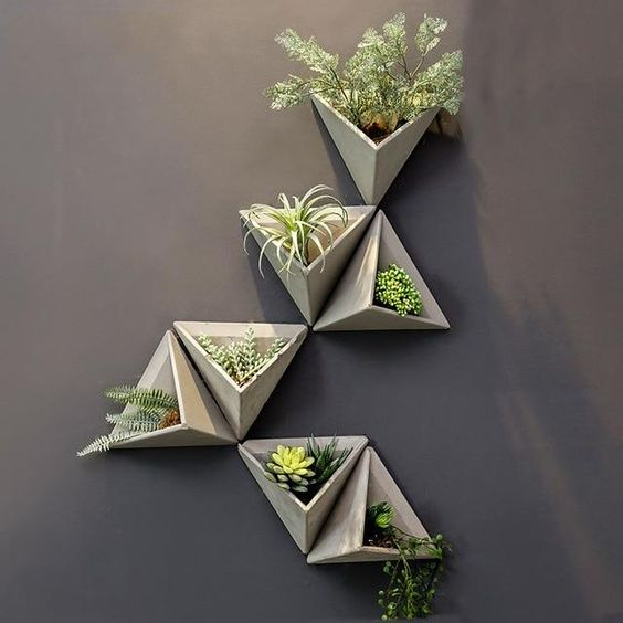 Trồng cây treo tường trang trí ban công phòng khách